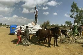 Fler hjälparbetare dödas i katastrofzoner