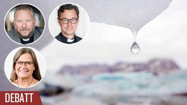 Fler kyrkor borde utlysa klimatnödläge