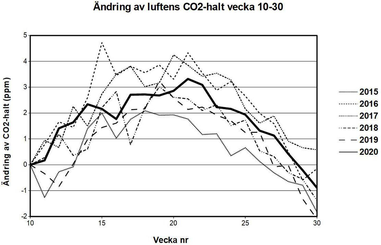 Trots omfattande nedstängningar av transporter och industrier skiljer sig inte luftens ändringar av koldioxidhalt i år från hur det sett ut under åren 2015–2019.