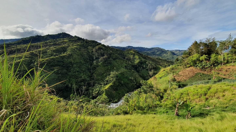 Papua Nya Guinea är känt för sin grönska.