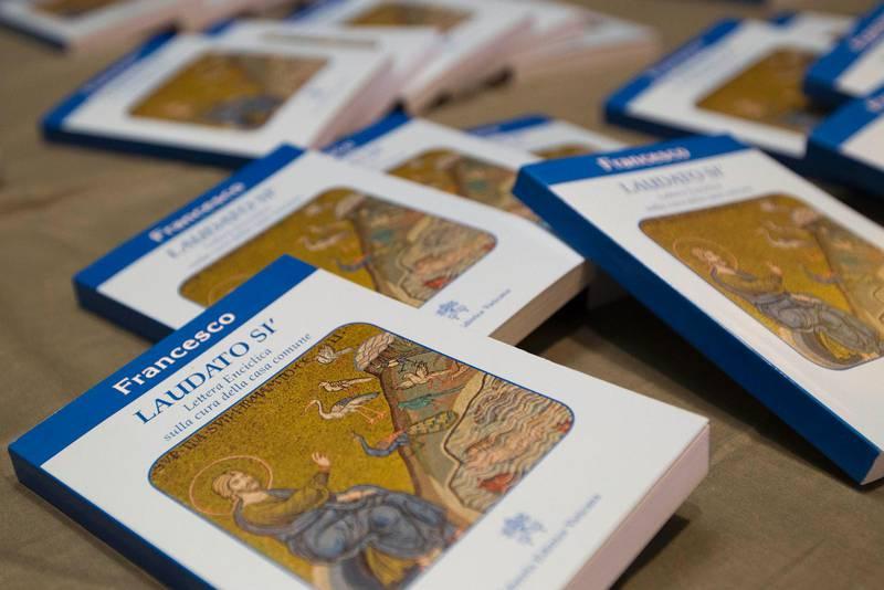 Encyklikan Laudato Si innehåller skarpa uttalanden om bland annat miljökrisen.