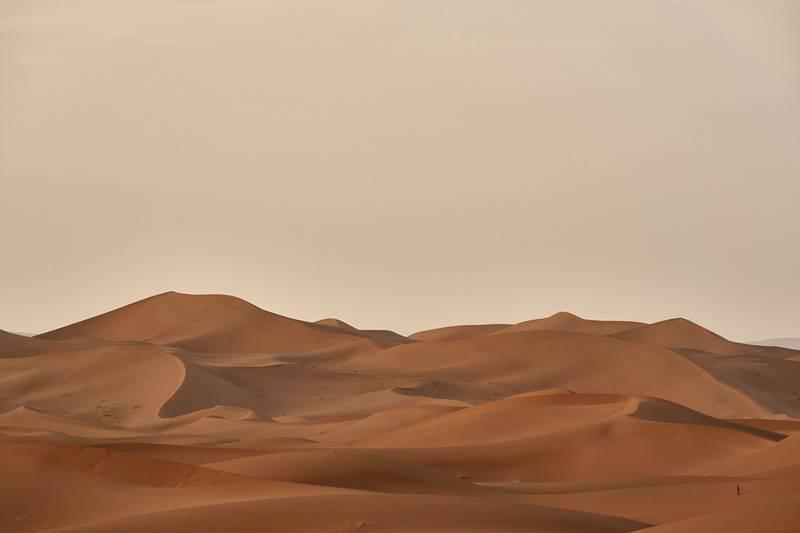Sanddynor i en öken.