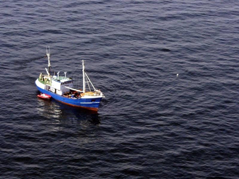 I augusti 2001 återvände Jutta Rabe för en andra dykexpedition vid Estonia. I samband med den fäste dykarna en minnesskylt på en banderoll och hängde den på Estonias vrak.